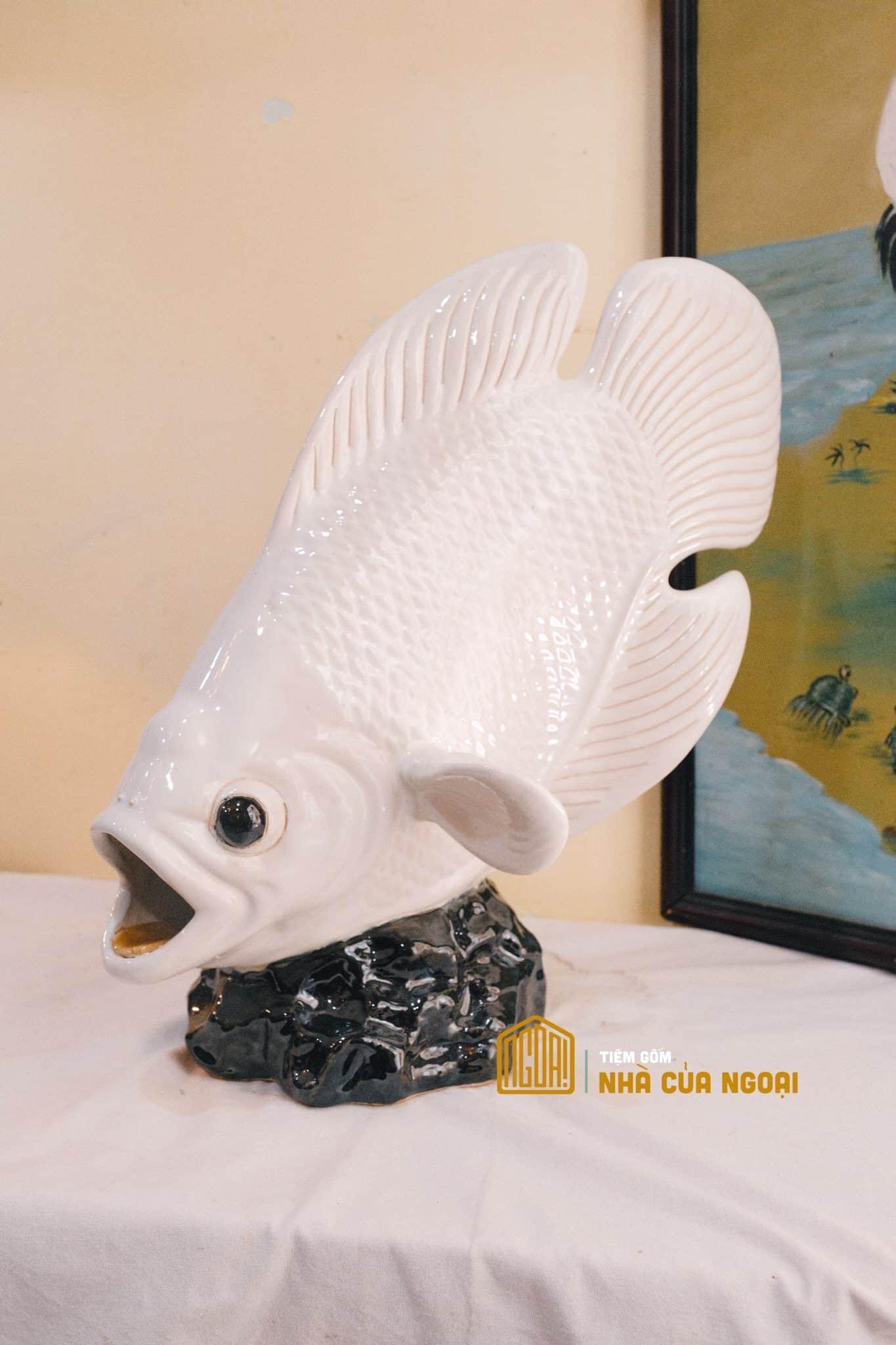 cá phát tài trắng